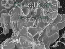 Howard Bloom; science; Big Bang; social psychology; multimedia; grand unified theory of everything;  cosmos; evolution; soul; psychology; Big Bang Tango; animation; street animation; social sciences; attraction; repulsion; Unified Theory; Global Brain; Lucifer Principle; street culture;